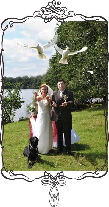 Hochzeitstauben-Verleih